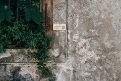 Baš je flora (Luna Džidić), Trg Sv. Marka 9