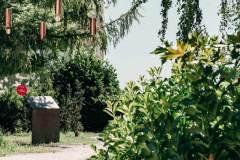 Singing Forest (Ida Blažičko & Alex Brajković), Park Bele IV