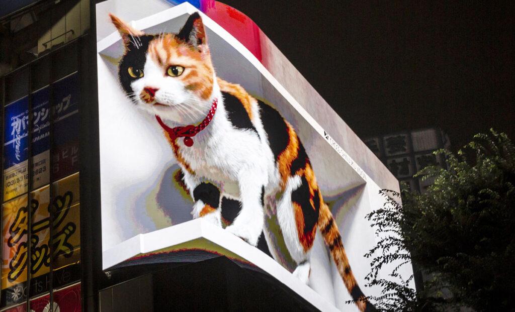 Divovska mačka s visoka govori zapanjenim prolaznicima
